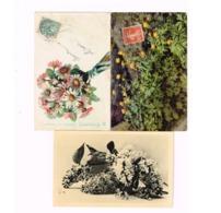 Lot De 8 Cartes.Fleurs. - Flowers