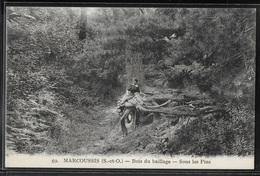 CPA 91 - Marcoussis, Bois Du Baillage - Sous Les Pins - Otros Municipios