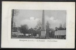 CPA 91 - Montgeron, La Pyramide - Forêt De Sénart - Montgeron