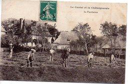 Le Cantal Et La Chataigneraie : La Fauchaison - Other Municipalities