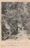 Ile De La Réunion - Saint Gilles Sous Bois En Comoran  Cliché Luda Ecrite 1906 - La Réunion