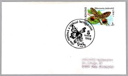 DIA MUNDIAL PROTECCION DEL MEDIO AMBIENTE - Environmental Protection - Mariposa - Butterfly. Medias, Rumania, 1992 - Protección Del Medio Ambiente Y Del Clima