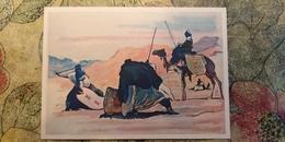 Regional Game,OLD USSR Postcard  - Iludiana - Fencing In Sahara  - 1981 - Jeux Régionaux