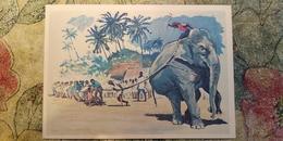 Regional Game,OLD USSR Postcard  - Tug Of War In India - Elephant  - 1981 - Jeux Régionaux