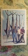 Regional Game,OLD USSR Postcard  - Cuba -  1981 - Sword Fish Fishing - Jeux Régionaux