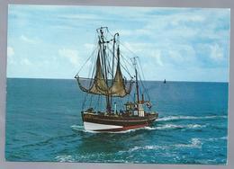 NL.- Vissersboot. - Visvangst