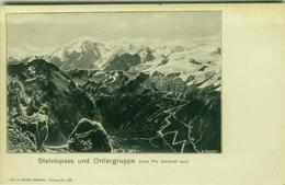 SWITZERLAND - STELVIO PASS UND ORTLERGRUPPE - EDIT S. TANNER - SAMADEN N. 279 - 1900s ( BG2313) - GR Grisons