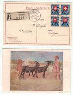 Suisse // Schweiz // Switzerland // Pro-Juventute // Carte Pro-Juventute 1925 Recommandée Pour Trogen - Pro Juventute