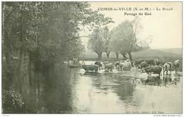 77.COMBS LA VILLE.N°29807.LE BREUIL.PASSAGE DU GUE - Combs La Ville
