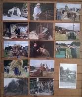 Lot De 14 Cartes Postales / BAUD 56 / YVON KERVINO / L'aventure CARTO - Métiers