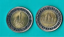 Egypt 1 Pound 2019 - Bimetal (1) - Egypte