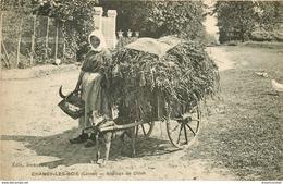 45 CHANGY-LES-BOIS. Paysanne Et Son Attelage De Chien Pour Le Transport Des Récoltes 1923 - Frankreich