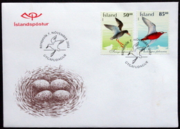 Iceland 2002  BIRDS   Minr.1022-23  FDC    ( Lot 6646 ) - FDC
