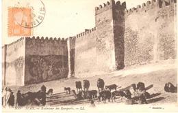 POSTAL    SFAX EN TUNEZ   -EXTÉRIEUR DES REMPARTS - Túnez