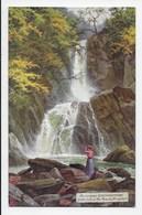Lower Falls Of The Mynoch, Aberystwyth - Tuck Oilette 7765 - Cardiganshire