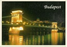 Budapest (Hungary, Ungheria) Ponte Delle Catene Notturno, Pont De Chaines La Nuit, Chain Bridge By Night - Ungheria