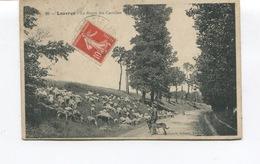 CPA - LOUVRES - La Route Des Carrières - Berger Chien Et Troupeau De Moutons  - Scans Recto-Verso - Louvres