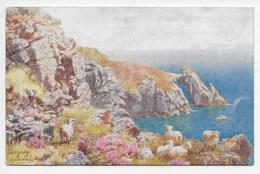 Torquay - The Natural Arch - H.B. Wimbush - Tuck Oilette 7367 - Torquay
