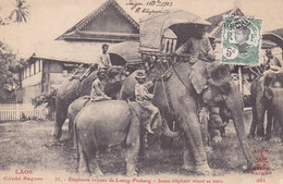 Eléphants Royaux De Luang-Prabang TBE - Laos
