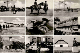 Hortobágy - 9 Bilder (84-711) - Ungarn