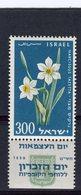 ISRAEL - Y&T N° 154** - Fleur - Narcisses - Israel