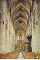 Leuven [AA35 0.469 - Leuven