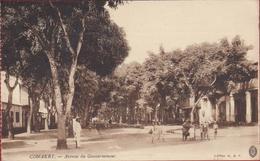 Guinee Conakry Avenue Du Gouvernement Afrika Africa Afrique Occidentale Ethnic Ethnique Natives Animee Timbre Senegal - Guinée