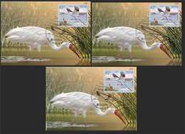 "RUSSIA 2019 2436. ""Europe"" Program Issues. Birds. Siberian Cranes (POST OFFICE: Moscow, Ryazan, St. Petersburg) - Storks & Long-legged Wading Birds"