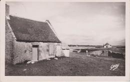 DAV :  Morbihan :  SARZEAU- PENVINS : Vue   1950 - Sarzeau