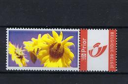 DOUSTAMP Zonnebloem MNH ** POSTFRIS ZONDER SCHARNIER SUPERBE - Private Stamps