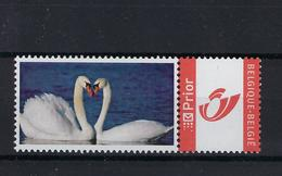 DOUSTAMP Zwanen MNH ** POSTFRIS ZONDER SCHARNIER SUPERBE - Private Stamps