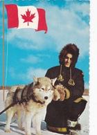 EDMONTON ROYAL CANADIAN MOUNTED POLICE CONSTABLE CHECKING HARNESS O LEAD DOG VG   AUTENTICA 100% - Edmonton
