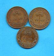 GRANDE BRETAGNE - British West Africa - Lot De 3 Pièces  - One Shilling - Années Différentes - Colonies