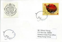 2019, Année Du Cochon,  Carte Souvenir Singapour Adressée à Hong-Kong - Nouvel An Chinois
