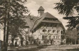 Kniebis-Lamm - Kurhotel An Der Schwarzwaldhochstraße [AA35 1.107 - Non Classés