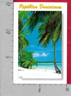 CARTOLINA VG REPUBLICA DOMINICANA - Spiaggia Palme - 10 X 15 - ANN. 2005 - Repubblica Dominicana