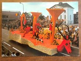 Oude FOTO  Postkaart  CORSO  FLEURI  ZUNDERT - Niederlande