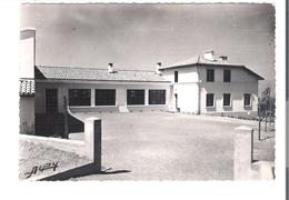 D 65  VIDOUZE  Ecole Communale - France
