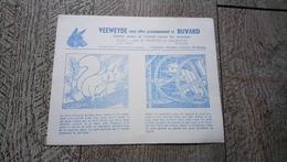 Buvard  Veeweyde Anderlecht Protection Des Animaux écureuil En Cage - Animaux