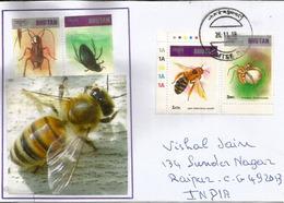 BHOUTAN. Himalayan Giant Honey Bee,   Sur Lettre Bhutan Adressée India - Abeilles