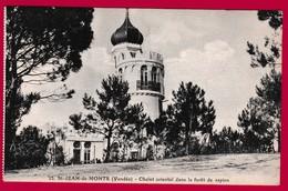 85 - St JEAN De MONTS  Chalet Oriental Dans La Foret De Sapins - Saint Jean De Monts