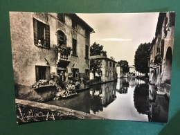 Cartolina Treviso - Canale Dei Buranelli - 1957 - Treviso