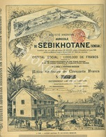 SA Agricole De SEBIKHOTANE (Senegal)  Schaerbeek-Bruxelles  15 Juillet 1899  RARE - Agriculture