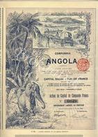 Companhia De Angola SA Schaerbeek-Bruxelles 1899  Action De Capital 50 F   N°0849 - Afrique