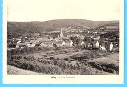 Olloy-sur-Viroin (Viroinval)-+/-1940-vue Générale Du Village Et De L'Eglise -Edit.Desaix/F.Cabaraux, Olloy - Viroinval
