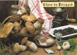 Carte Postale Champignon Cèpes - Hongos