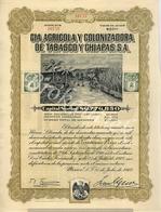 Cie Agricola Y Colonizadora De Tabasco Y Chiapas SA  Mexico 1912 , Share 25,00 $ N°10759 - Landbouw