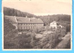 Marche-les-Dames (Namur)+/-1950-Pensionnat Des Carmélites De Saint-Joseph-Ecole Professionnelle-Jardin St.Bernard - Namur