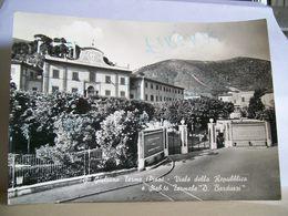 1961 - Pisa - S. Giuliano Terme - Sabilimento Termale D. Barduzzi - Viale Della Repubblica - Ed. M. Lena Ceccotti - Pisa
