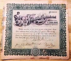 TRINIDAD INDUSTRIAL  S.A. Titulo Representativo De UNA ACCION Por Valor De CIEN PESOS A Favor De Joaquin MENENDEZ  1920 - Industrie